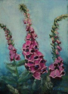 Foxgloves Resized