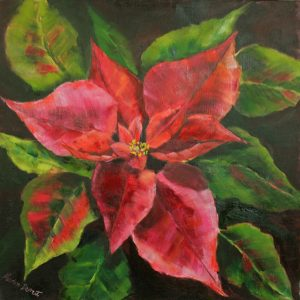 Star Poinsettia Oil painting 41cm x 41cm Unframed £80