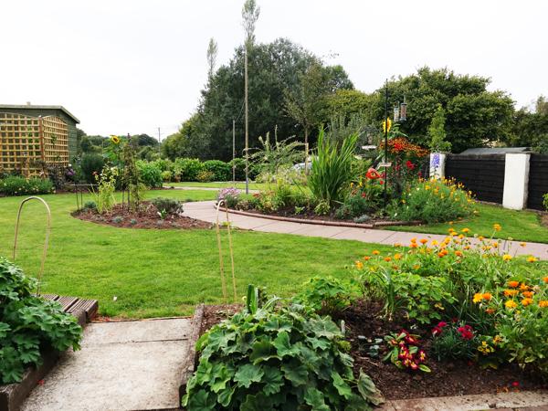 Garden September 2018